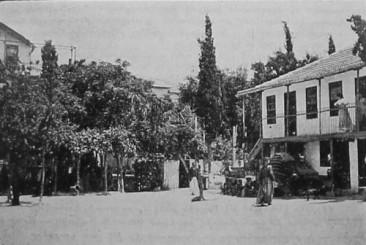 American girl school of Adana