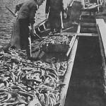 Fishing at the Lake Sevan