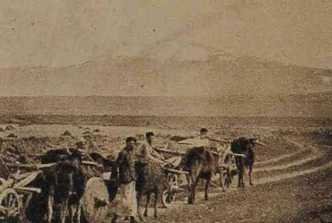 Armenian farmers in the plain of Gyumri – 1919