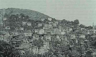 City of Artvin