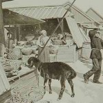 Bazaar of Erevan in 1898