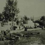 Papert - 1916