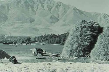 Farming near Lake Van