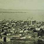 Salonig