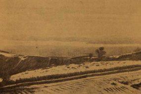 Plain of Mush