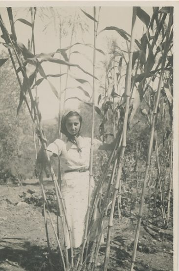 Anahid Kaloustian – late 1930s